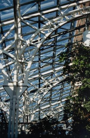 Blue Cross atrium.jpg